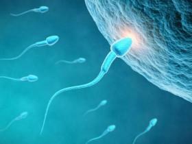 九个最准确怀儿子的征兆验孕棒可测